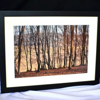 Canvas with wood frame